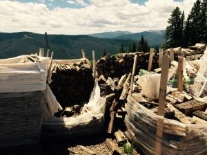wild wood stacks