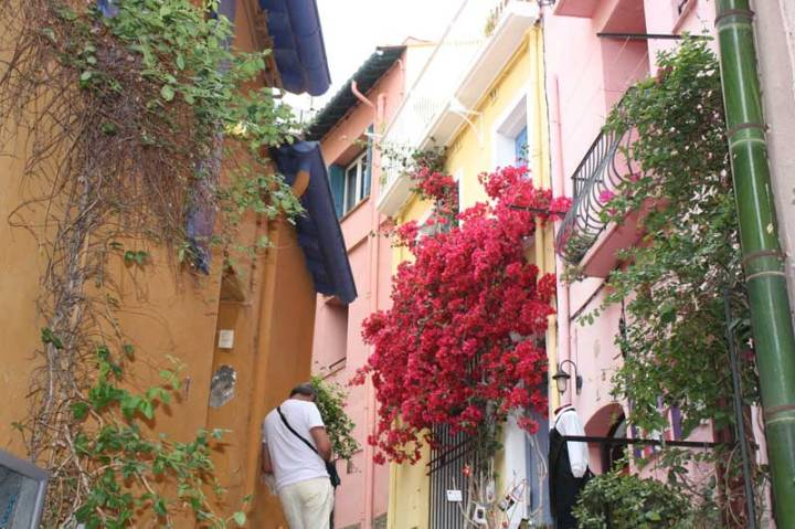 Colourful-buildings-Collioure