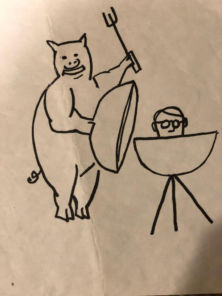 quilt pig